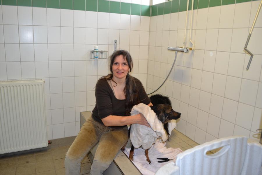 Tierschutzverein Baden-Baden