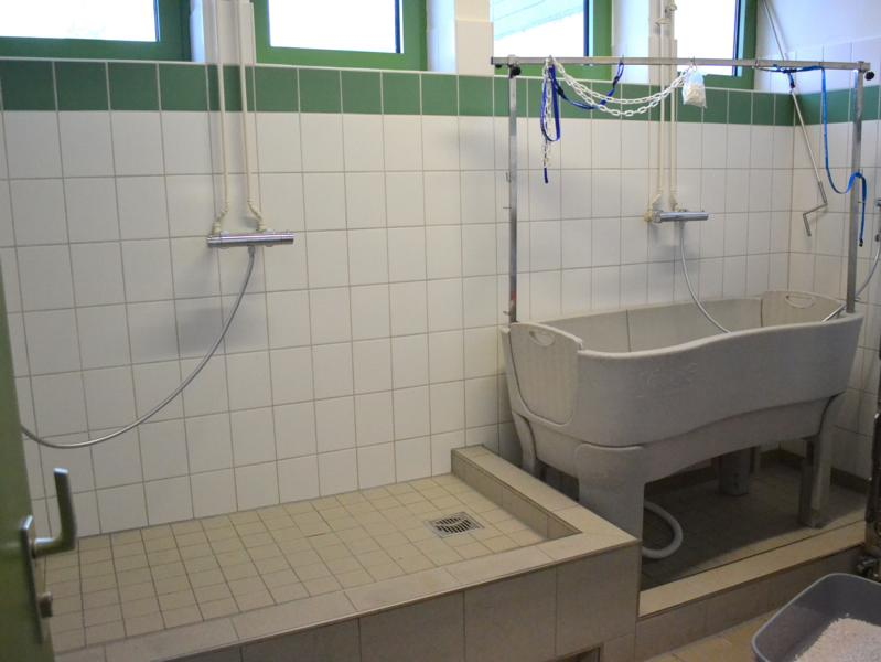 HTV bedankt sich herzlich für neue Hunde-Badezimmer - Hamburger ...